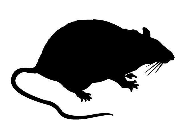 Rat Silhouette (Small)